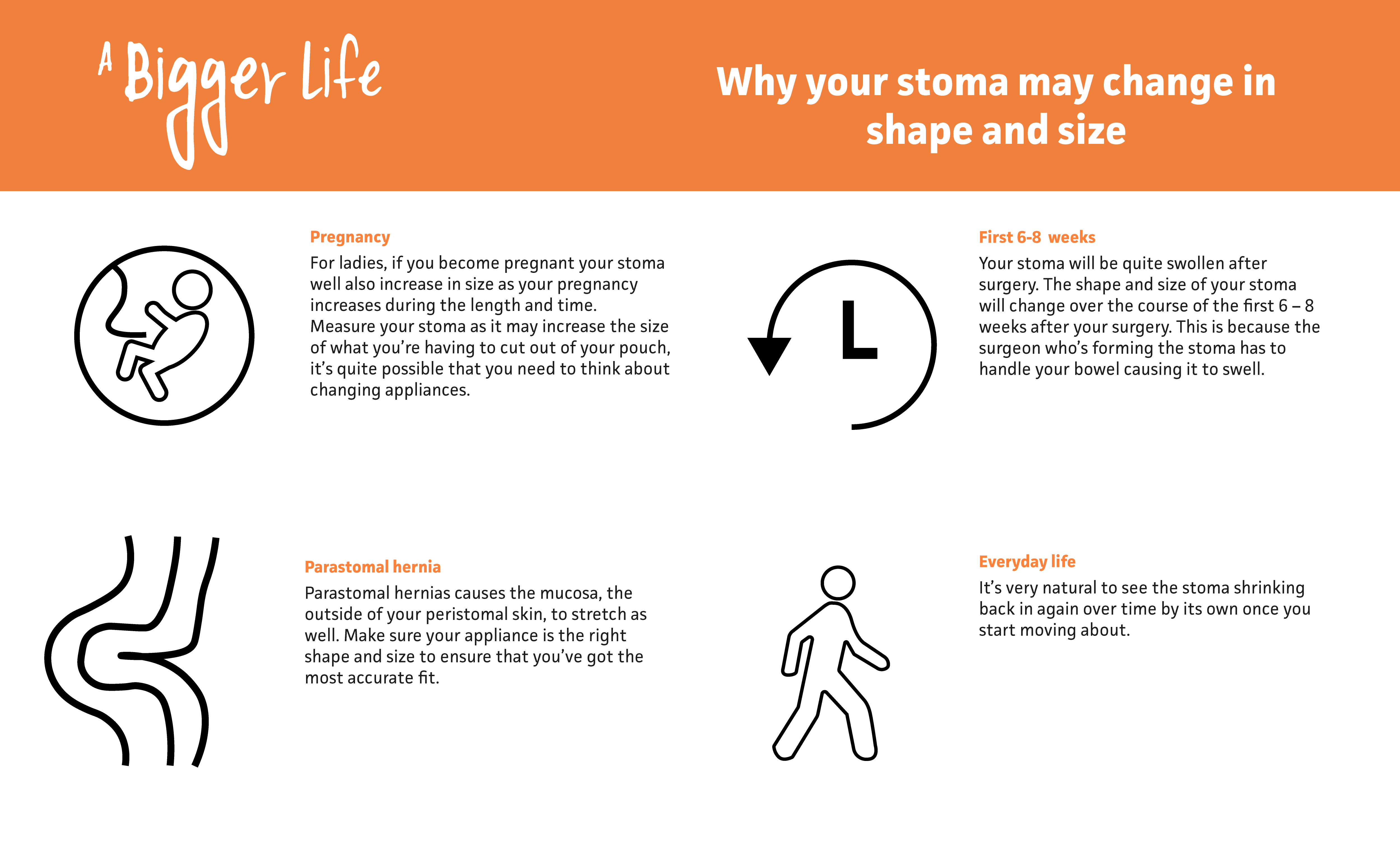 Why your stoma may change in shape and size Infographic